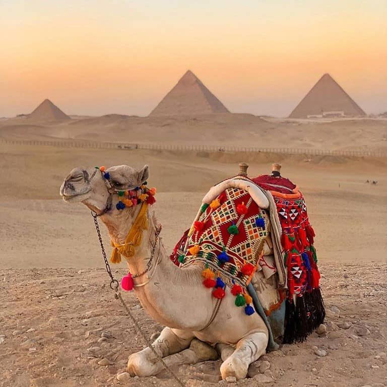 Egypt Excursions, Giza Pyramids