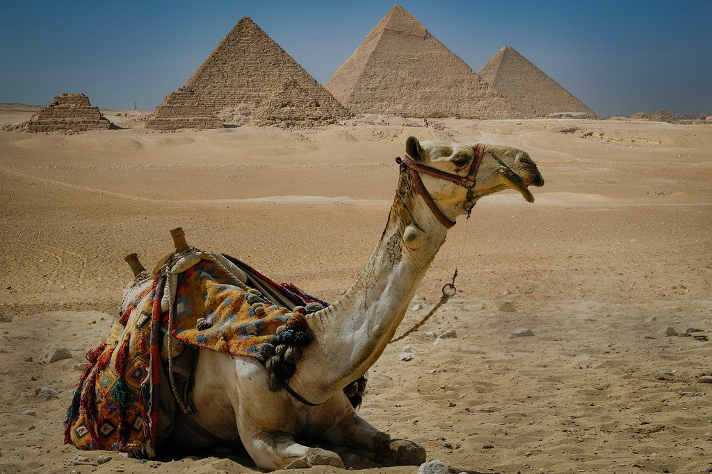 Cairo Day Trip from Sharm El Sheikh by Air